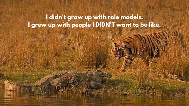 harimau dan buaya quora