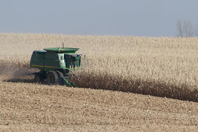 Minnesota corn nitrogen fertilizer on-farm research