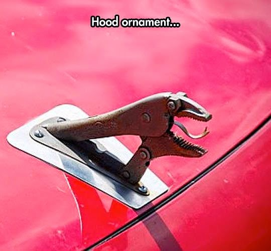 Funny Hyundai Velociraptor Car Hood Ornament Photo Picture