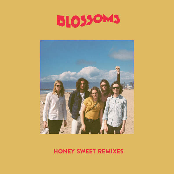 Blossoms - Honey Sweet (Remixes) - Single Cover