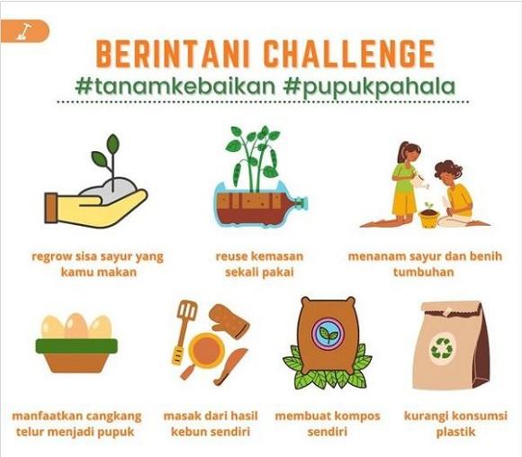 Berintani challenge