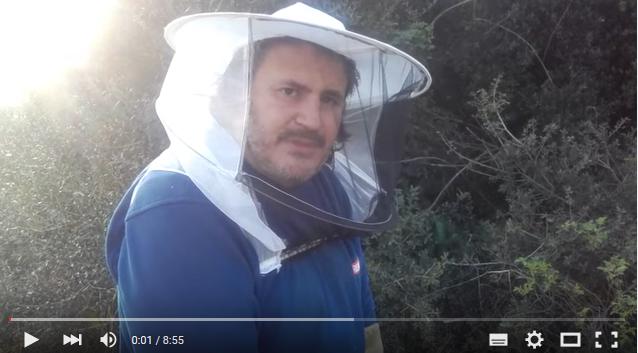 Η πρόοδος ενός μελισσιού που ήταν καταδικασμένο!!! Βιντεάκι