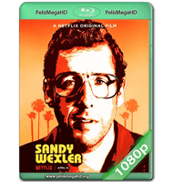 SANDY WEXLER (2017) WEB-DL 1080P HD MKV ESPAÑOL LATINO