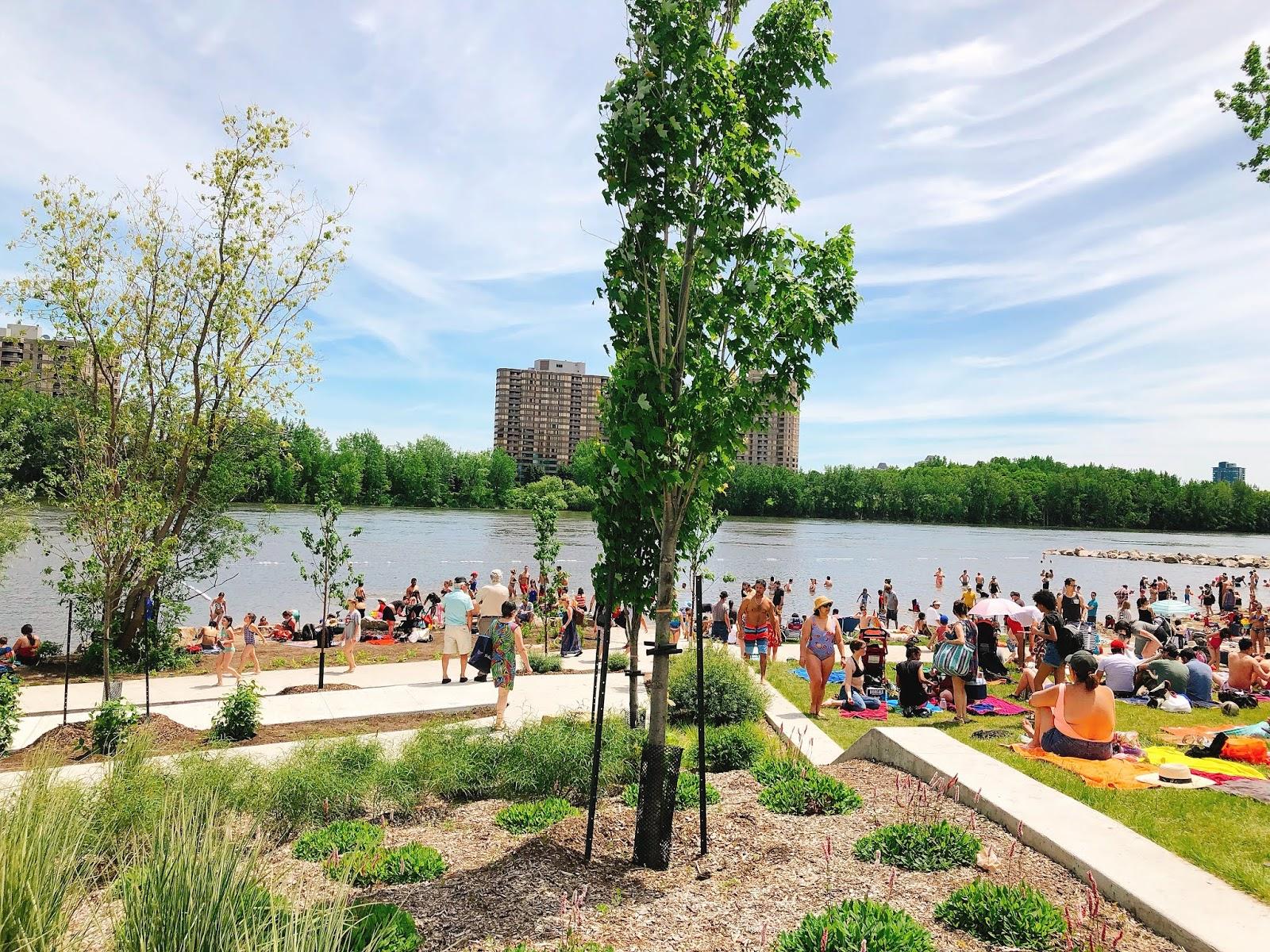 Actividades al aire libre y gratuitas para el verano