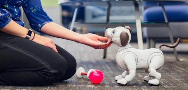sony dog robot