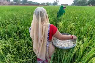 Rs.2000-will-be-credited-to-the-farmers-account