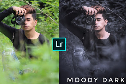 Download Dark Moody Lightroom Preset