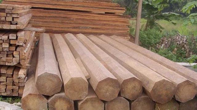 Karakteristik kayu jati perhutani