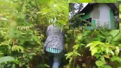 Bank Sampah GDM Mangkrak, Daerah Rugi Miliaran Rupiah
