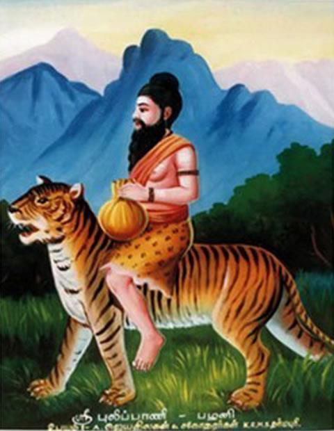 Image result for புலிப்பாணி சித்தர்
