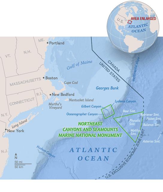 Bản đồ khu vực vùng bảo tồn mới ở vùng biển New England, phía đông bắc Hoa Kỳ. Credit: Riley D. Champine.