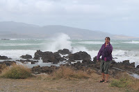 Windy day on Cook Strait