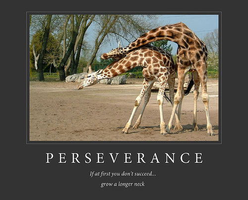 Funny image clip funny demotivational posters animals images - Animal pak motivational quotes ...