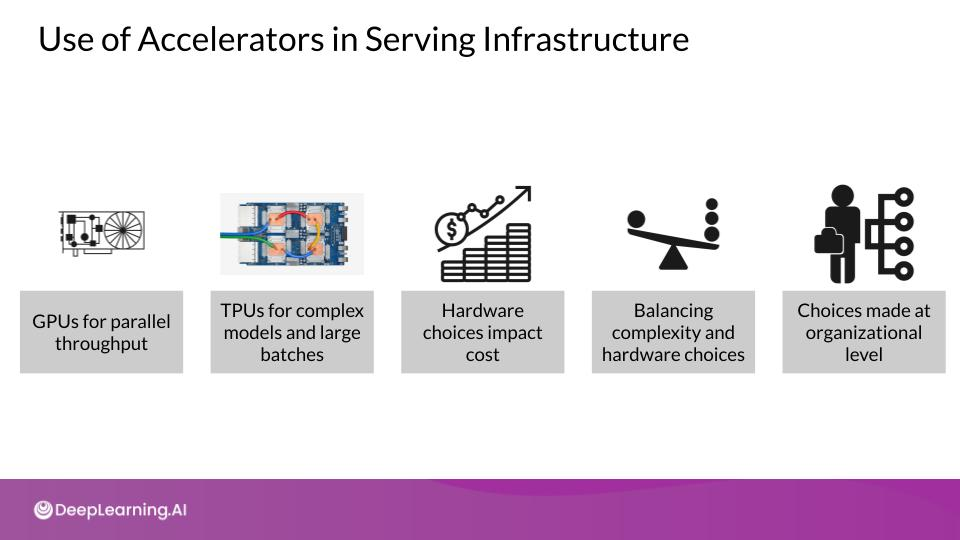 Use of Accelerators in Serving Infrastructure