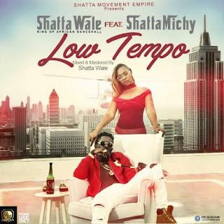 Shatta Wale Ft. Shatta Michy - Low Tempo Audio