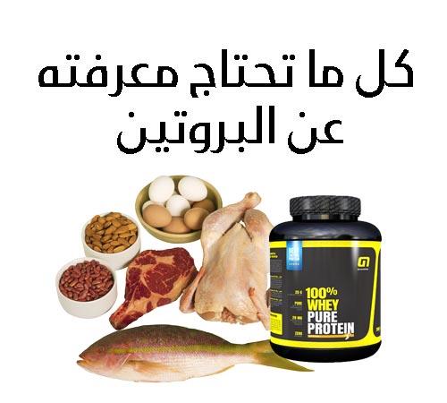 صورة لموضوع شامل عن البروتينات