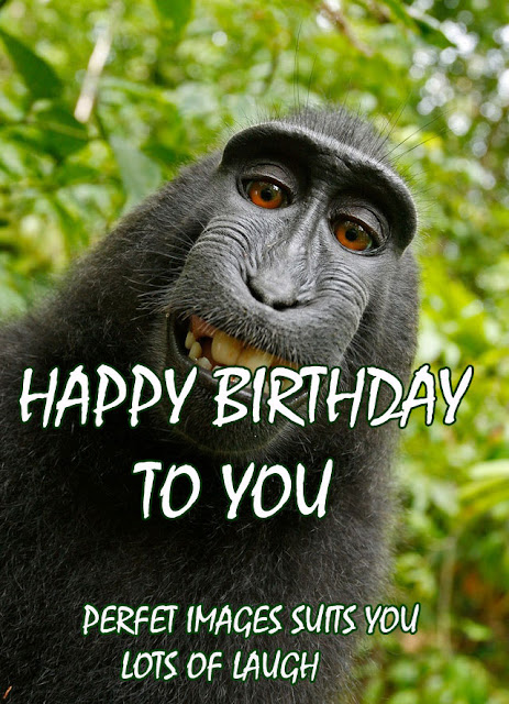 happy birthday funny images for her