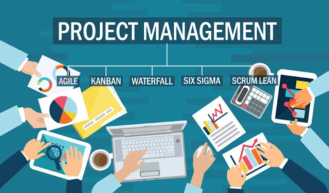 What is the Project management types