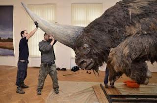 Rinoceronte gigante asiático