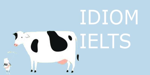 speaking IELTS menggunakan idiom