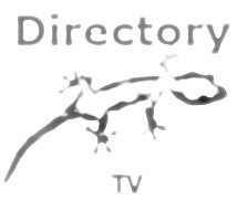 directory TV SEO
