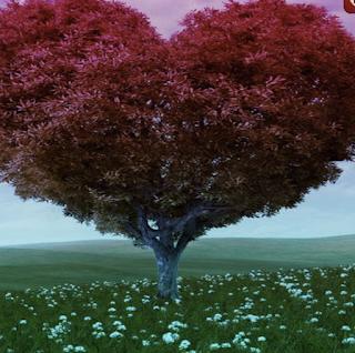 Dream Heart Forest Escape