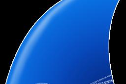 Download Software Wireshark   Google Drive