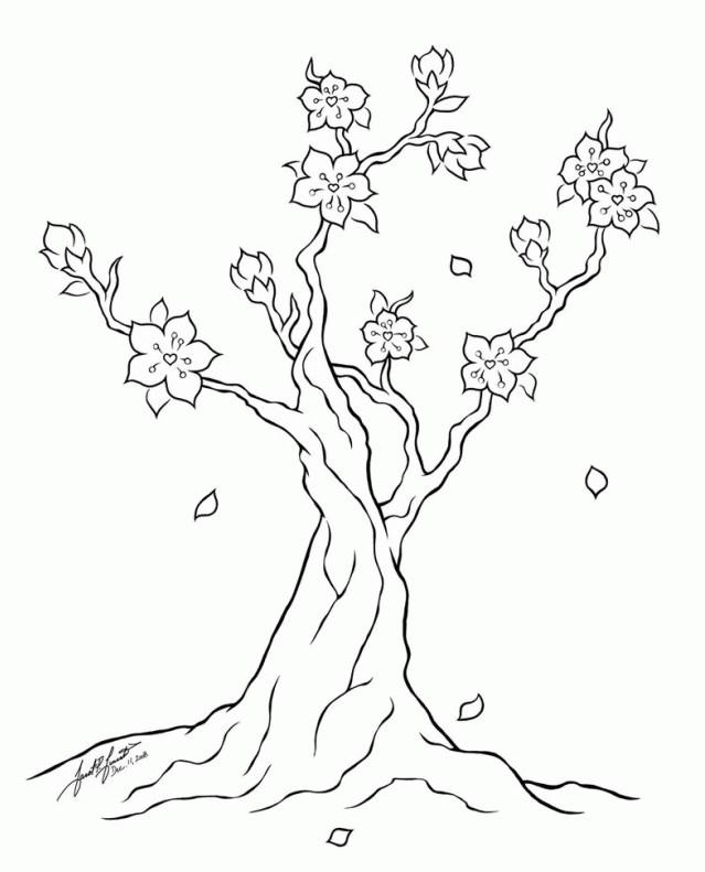 Gambar Mewarnai Bunga Sakura Terbaru Gambarcoloring