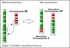 Translokasi Ekspresi Gen