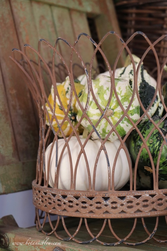 Place small gourds and pumpkins in an open wire basket to vary color, texture, shape, and size in a small French Country rustic fall entry