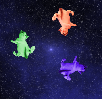 Three colorful kittens whirling in space