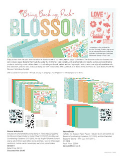 Bring Back My Pack — Blossom flyer - page 1