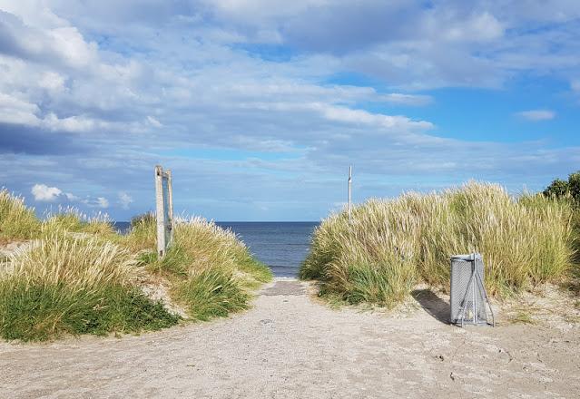 Unsere 11 besten Ausflugstipps für die Ostseeküste Nordjütlands. Am Strand von Lyngsaa könnt Ihr wunderbar Muscheln sammeln, ein tolles Ziel an der Ostsee in Dänemark!