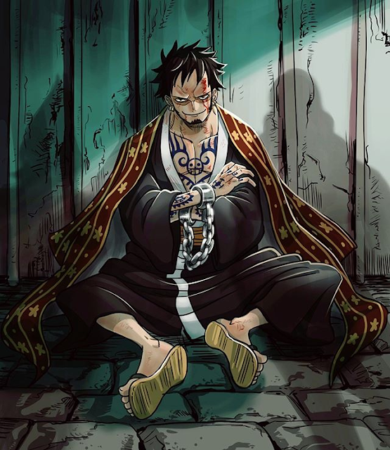 What is the main purpose of Trafalgar Law in One Piece?