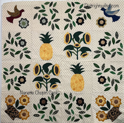 a variety of applique sunflower and pineapple blocks