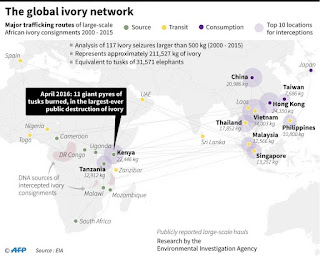 The global ivory network showing major trafficking routes