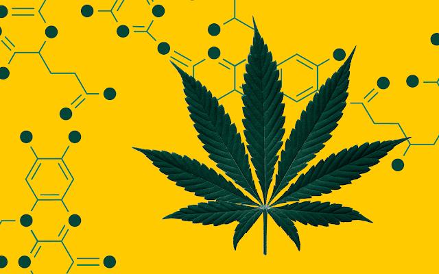 The Single Most Important Marijuana-Use Statistic