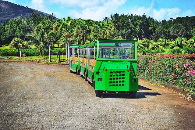 Maui Tropical Plantation train