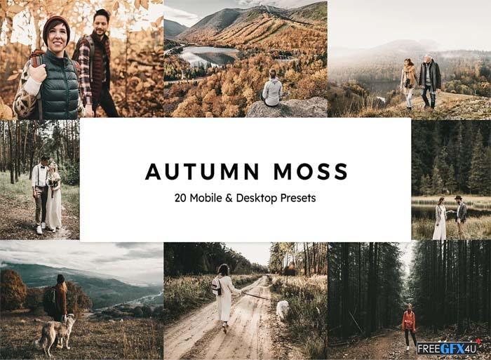 Autumn Moss Lightroom Presets