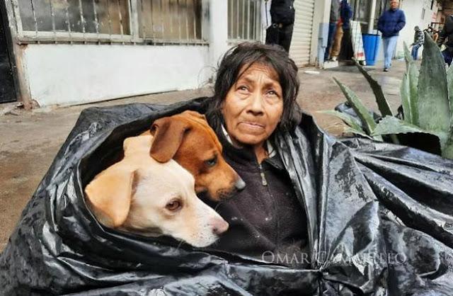 Любовь бездомной женщины к её четвероногим друзьям