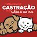 Prefeitura de Cajati abre inscrições para a 3ª Campanha de Castração de cães e gatos
