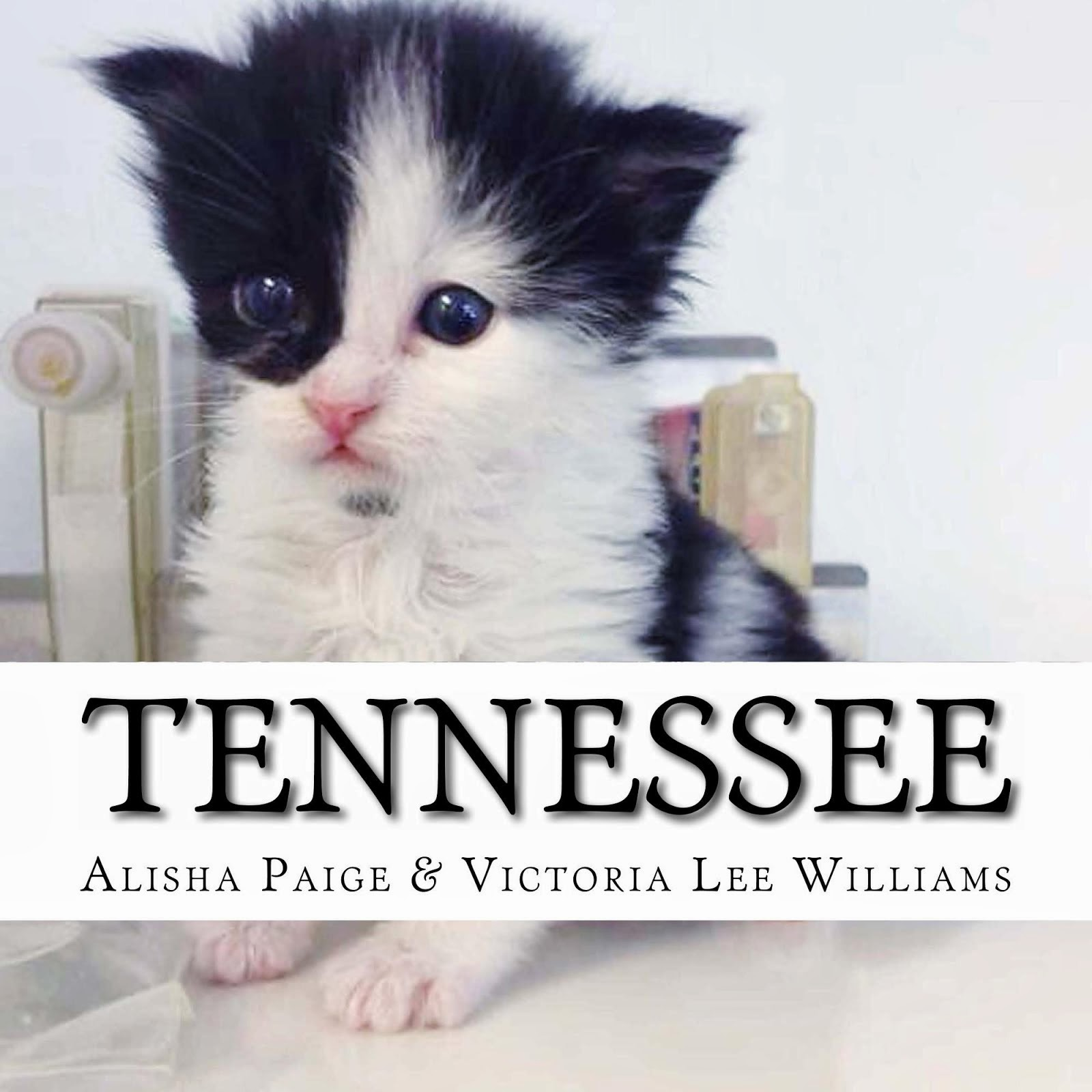 Tennessee, the Story of the World's Best Therapy Cat