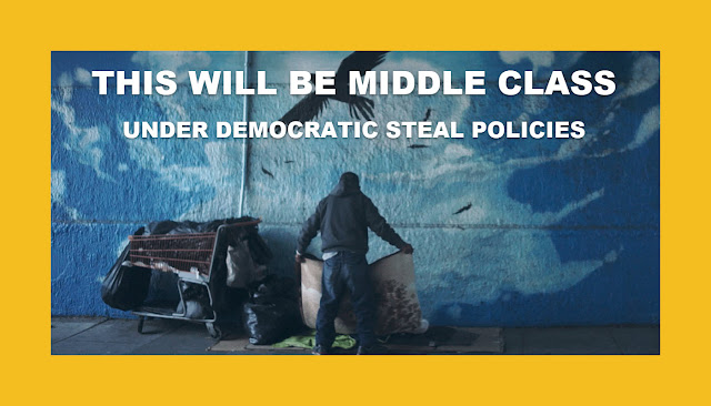 THE DEMOCRATIC STEAL POLICIES