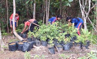 edukasi lingkungan pada anak sekolah