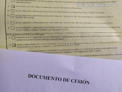 Un documento de cesión junto a su CITES correspondiente