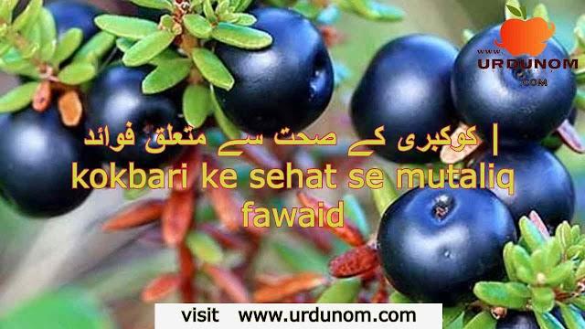 کروبیری کے صحت سے متعلق فوائد | crowberry ke sehat se mutaliq fawaid