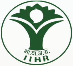 Image result for IIHR