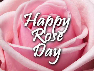 Happy Rose Day 2020 Images, Wallpapers, Pics & Photos