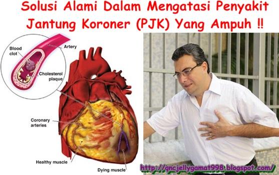 Obat Tradisional Penyakit Jantung Koroner (PJK)