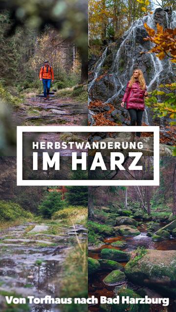Herbstwanderung im Harz  Torfhaus – Eckerstausee – Bad Harzburg 22